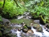 elk-creek-chilliwack-bc