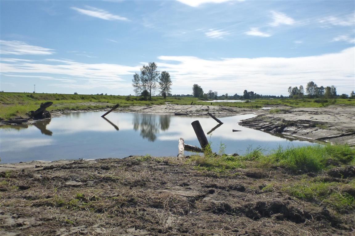 Habitat Restoration, Enhancement and Reclamation